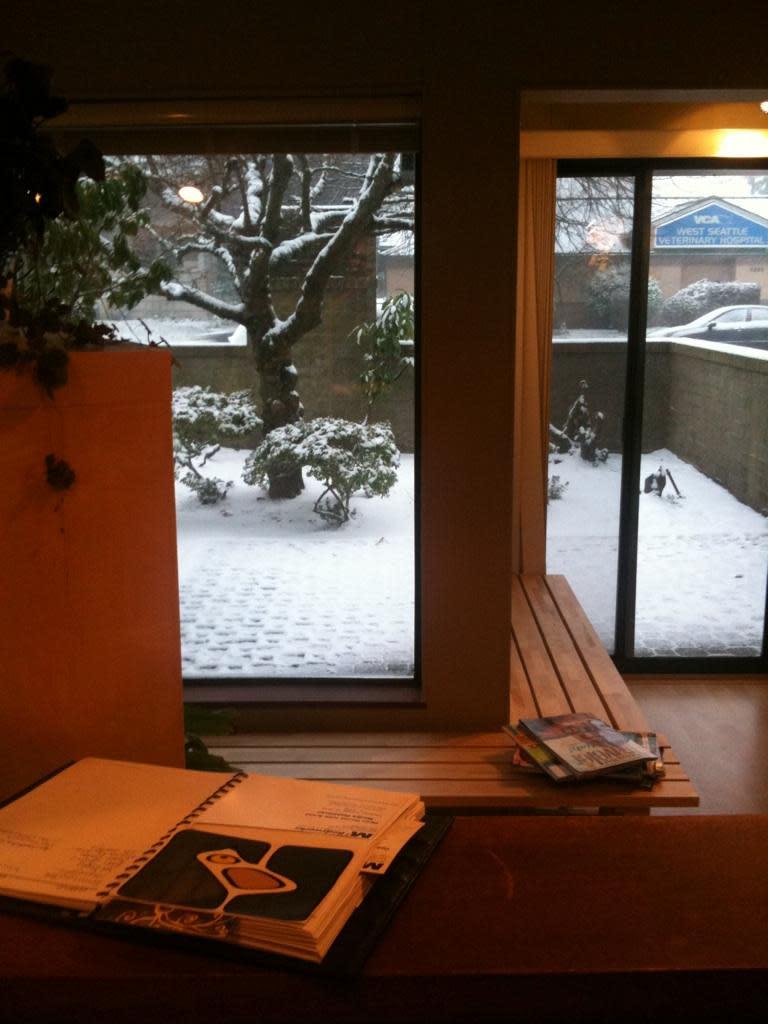 Snow at M3 at M3 Bodyworks Massage Clinic